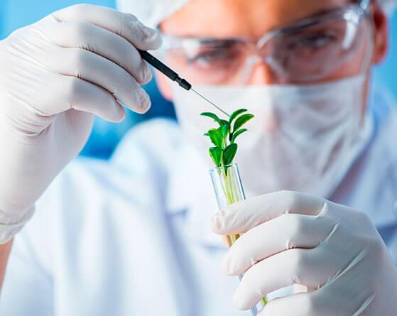 Especialista trabajando en un laboratorio de Natural Santé, de Grupo Cinfa